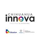 Chihuahua Innova 2017
