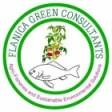FLANICA GREEN CONSULTANTS