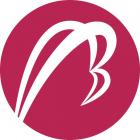 Betatron Startup Accelerator Cohort #2