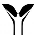 Enaayah Software Development & Services