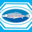 Ywai Aqua Life Integrated Systems's profile picture