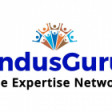 IndusGuru Network Partners LLP's profile picture