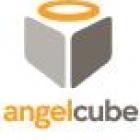 AngelCube 2013