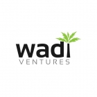 Wadi Ventures