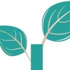 Portland Seed Fund Class 04- 2013