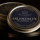 OLOOSON Caviar Factory 2.0