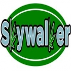 Skywalker Accelerator Application
