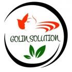 GOLIN SOLUTION