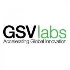 GSVlabs Pioneer Accelerator
