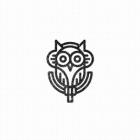 STALKER OWL