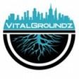VitalGroundz Media