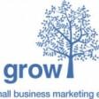 Grow's Online Marketing Masterclass