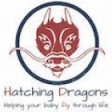 Hatching Dragons's profile picture