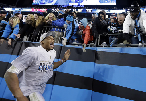 50ffd49c FanAngel | Newton, Panthers rout Cardinals, 49-15 for NFC title