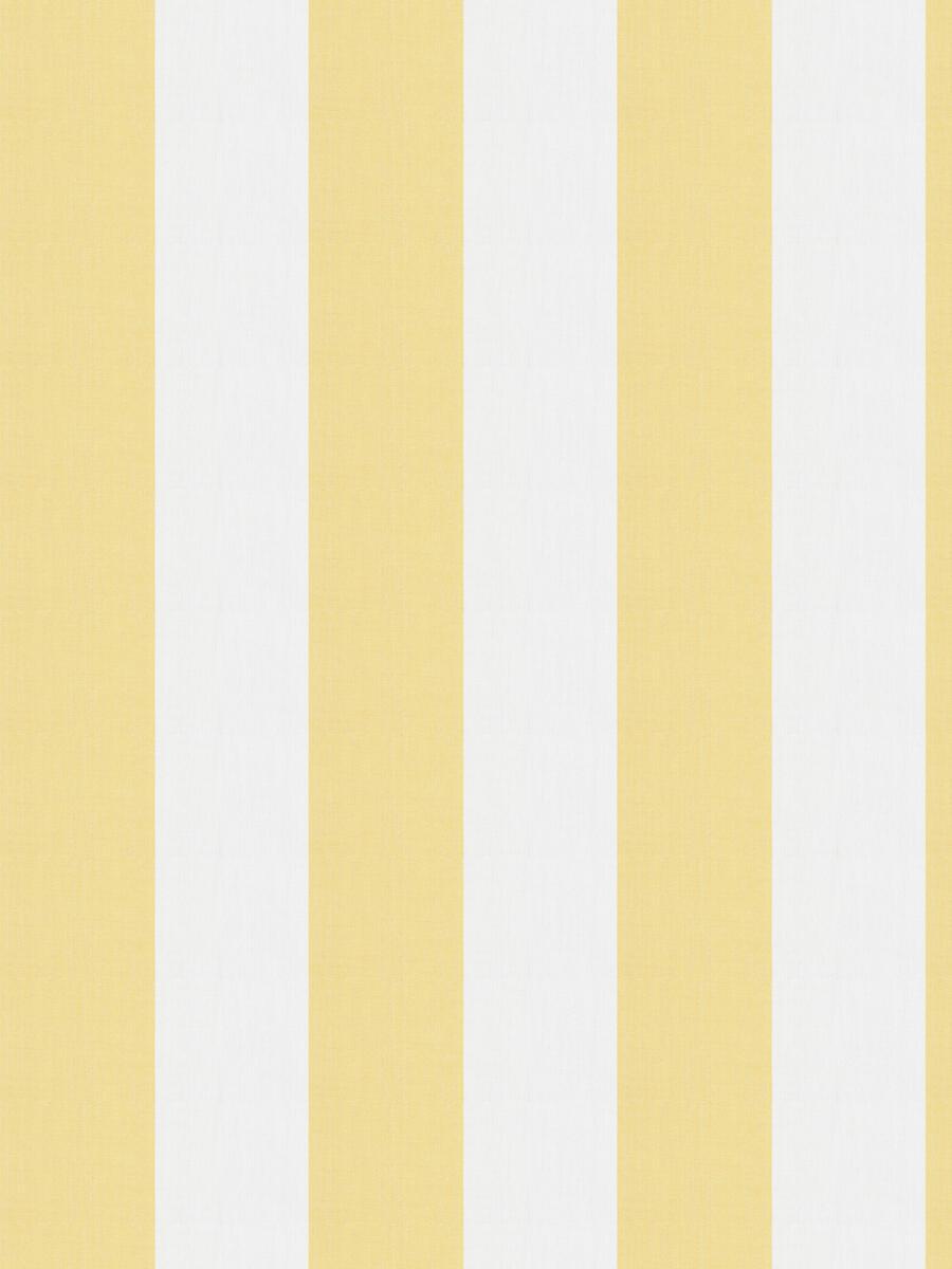 Ski Stripe 14