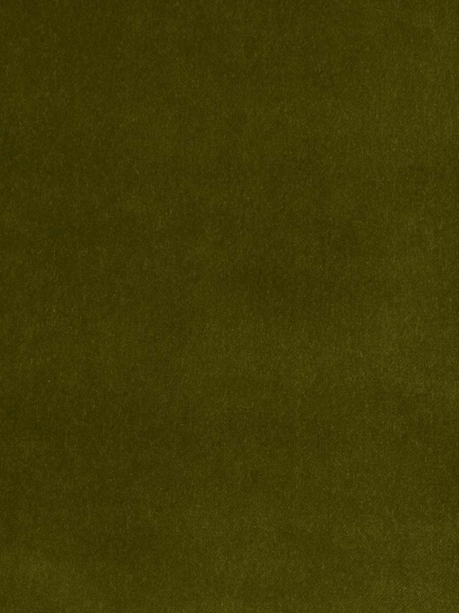Baird Olive