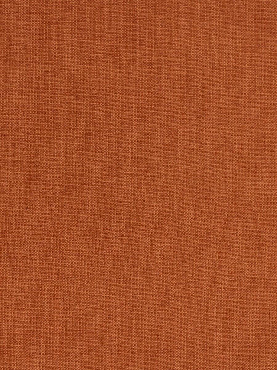 Zeal Carrot