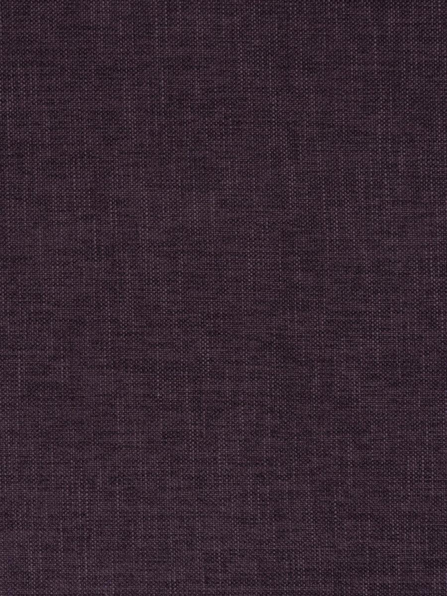 Zeal Violet