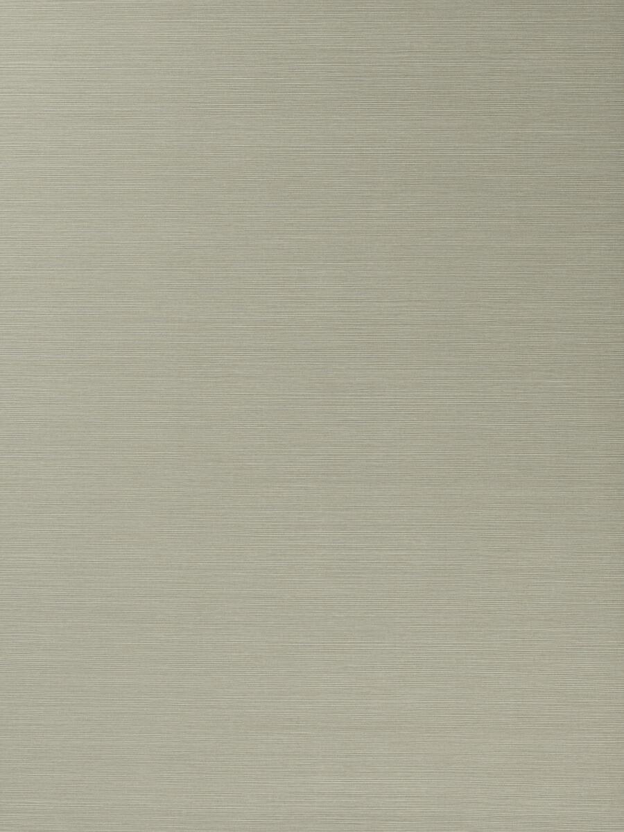 50299W Salix Silver 15