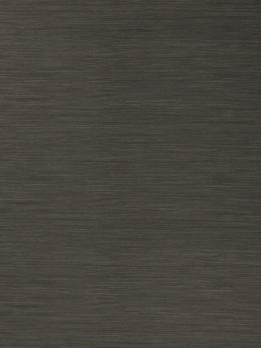 50299W Salix Graphite 17