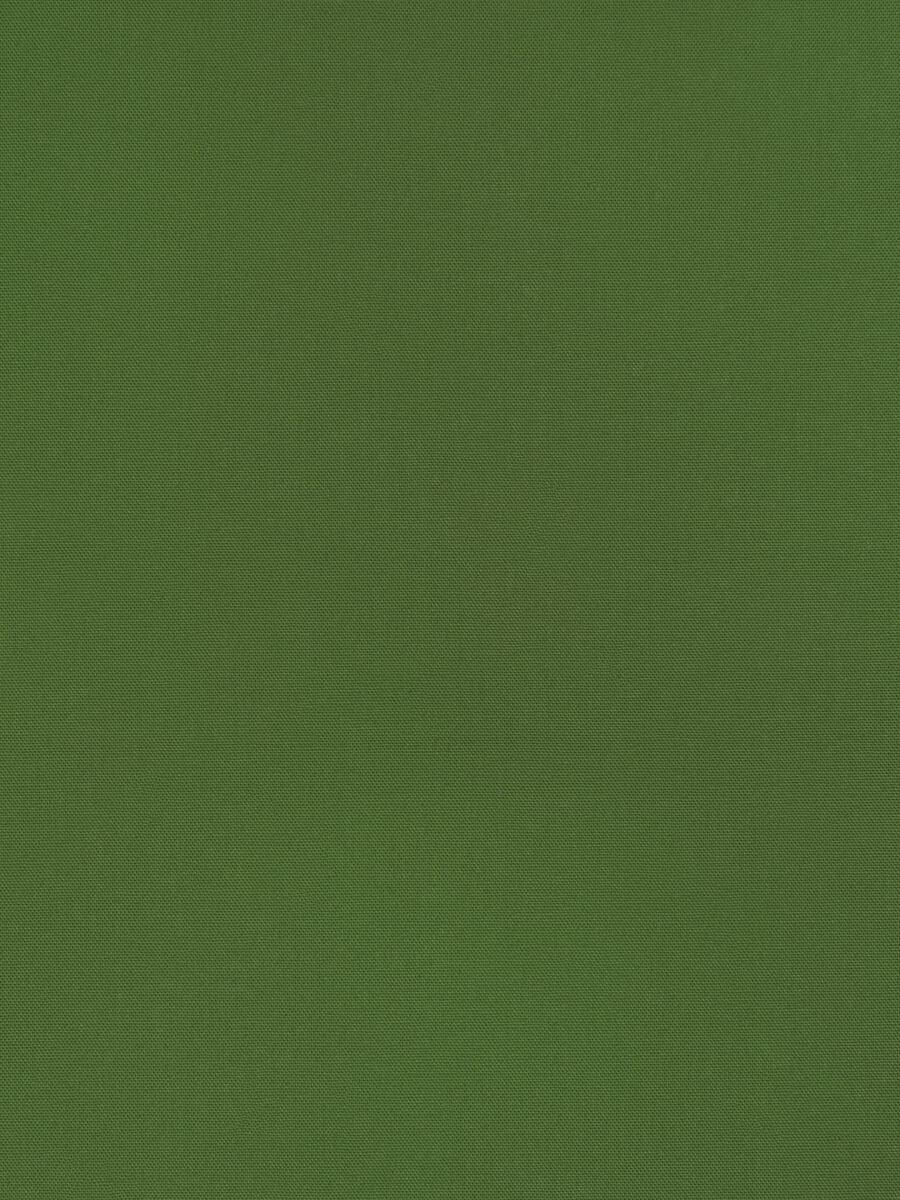 Wrangler Chive
