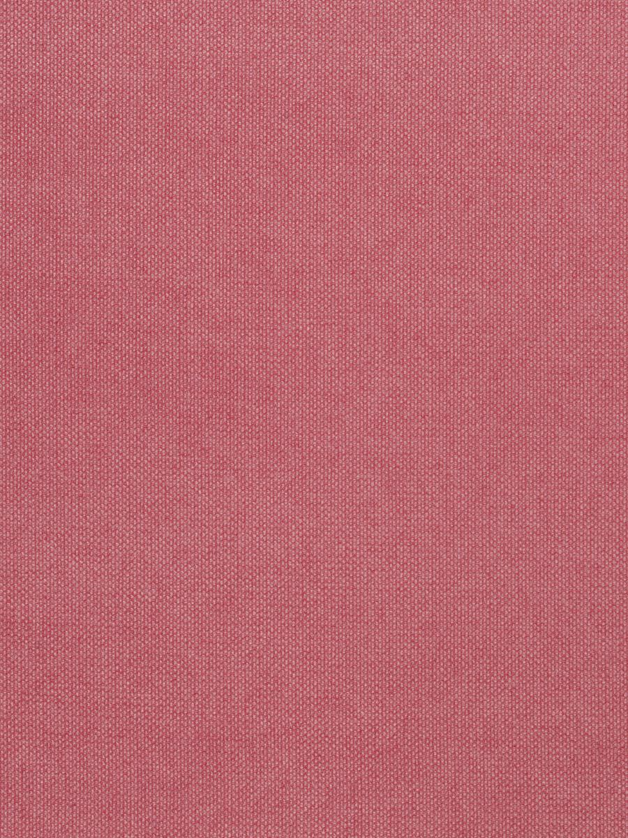 03600 Hibiscus