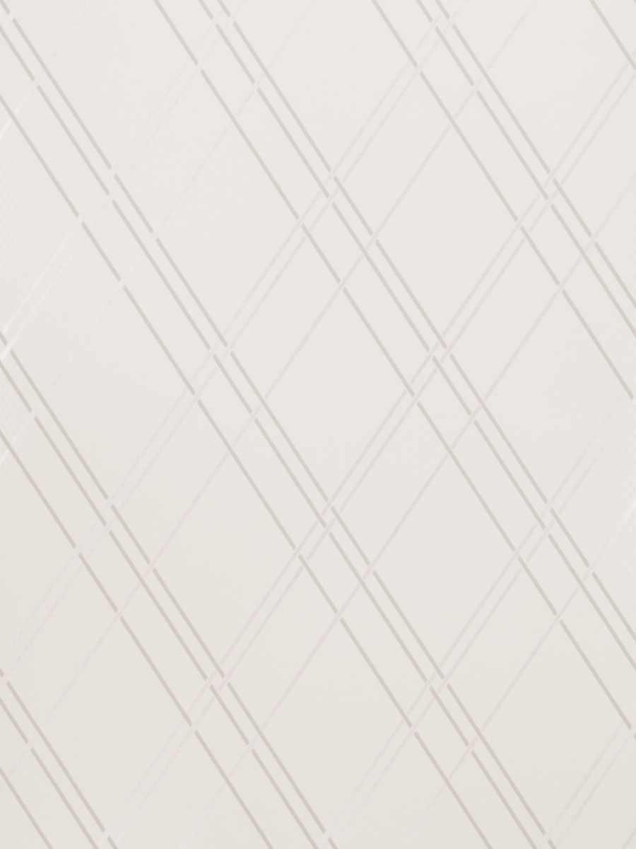 50058W Cornova Silver 01