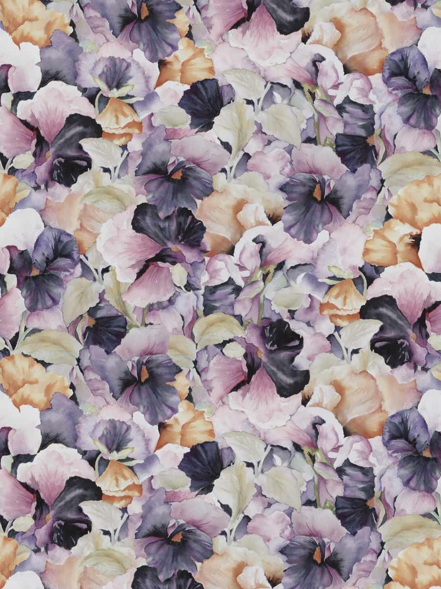Ammal Flora 01