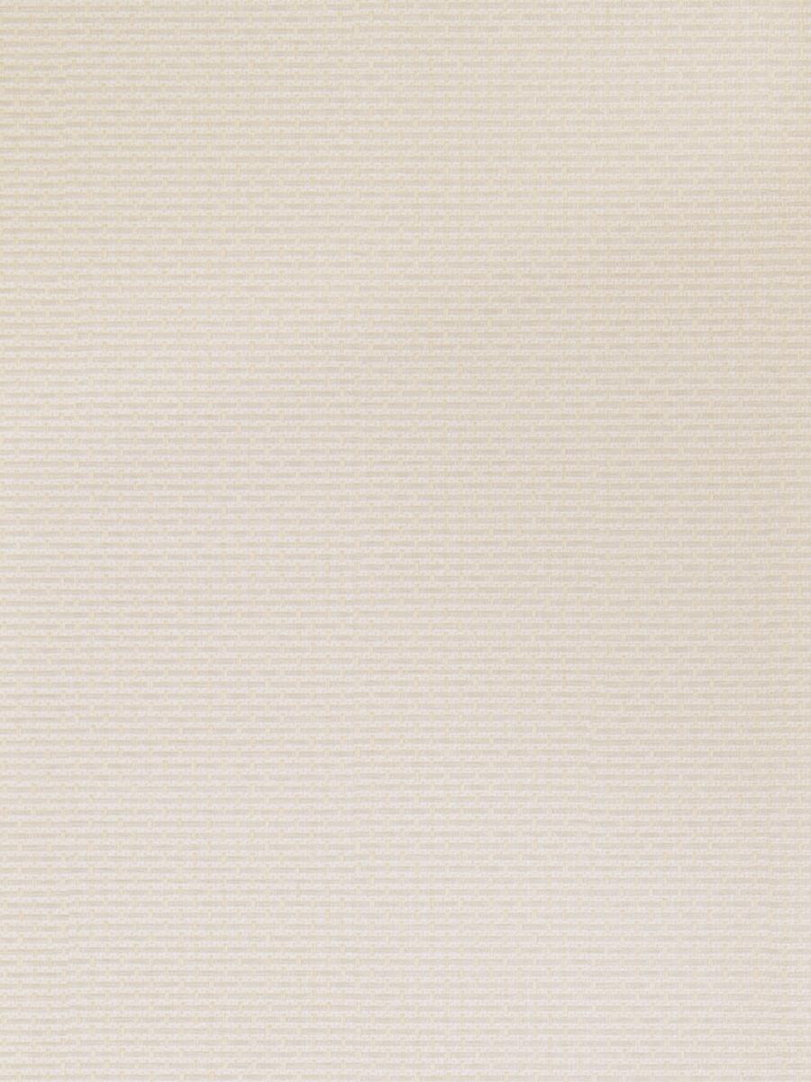 50143W Caramoa Seashell 04