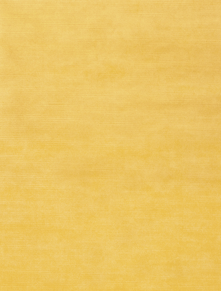 Finesse Velvet Primrose