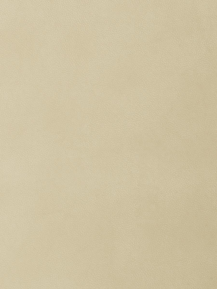 04207 Parchment