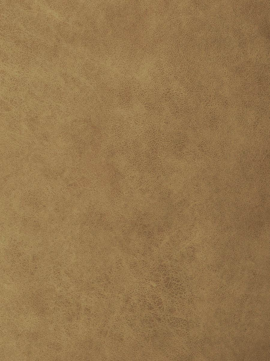 04209 Camel