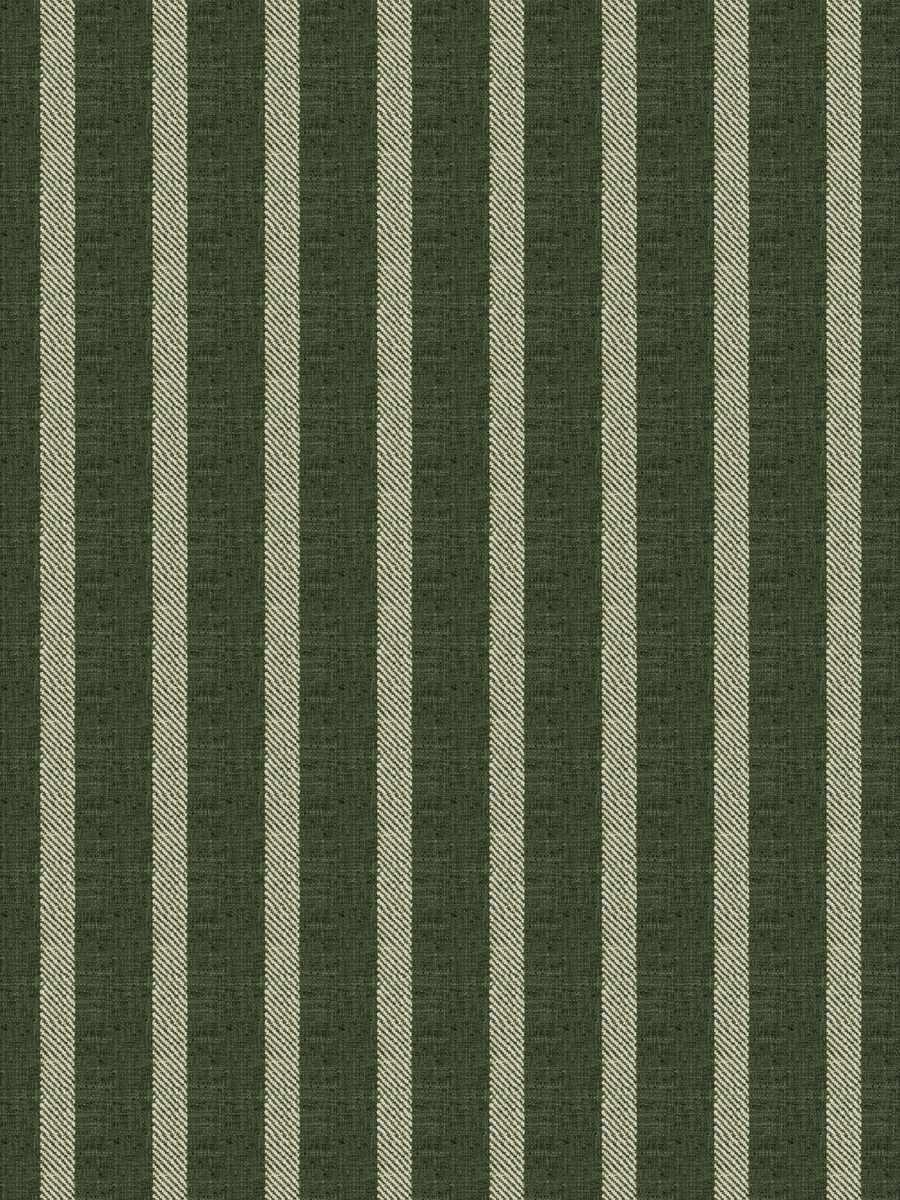 Claymont Stripe Kale