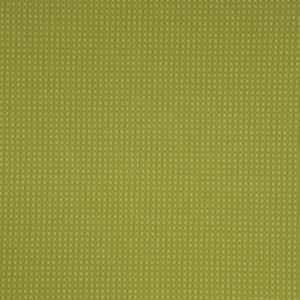 Seabreeze Lime