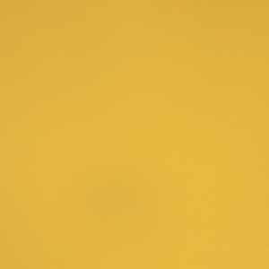 Shadow Box Golden Ray
