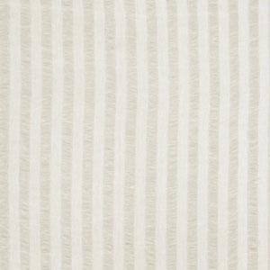 Drexler Stripe Ivory