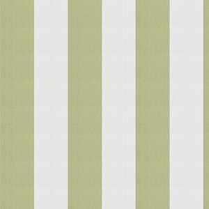 Ski Stripe Celery