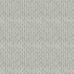 Saranac Parchment