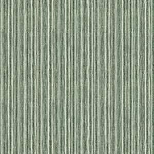 Market Stripe 06