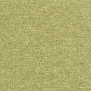 Nimba Grass