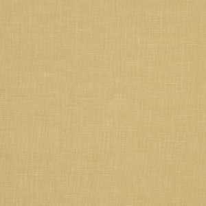 01367 Camel