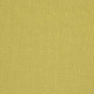 01367 Lime