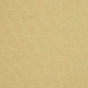 01838 Cashew
