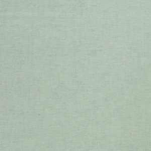 01838 Spearmint
