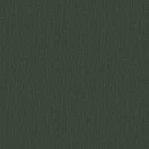 01838 Spruce