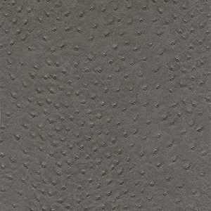 50312W Remi Greystone