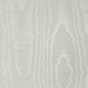 50308W Maxis Seashell