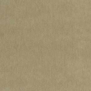 Liardi Camel