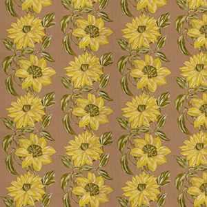 Stella D'Oro Golden Yellow