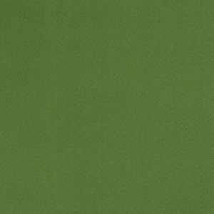 04770 Leaf